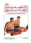 آناتومی تمرینات عضلات مرکزی